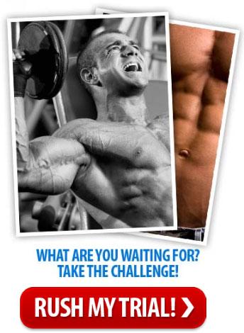 muscle mass supplement